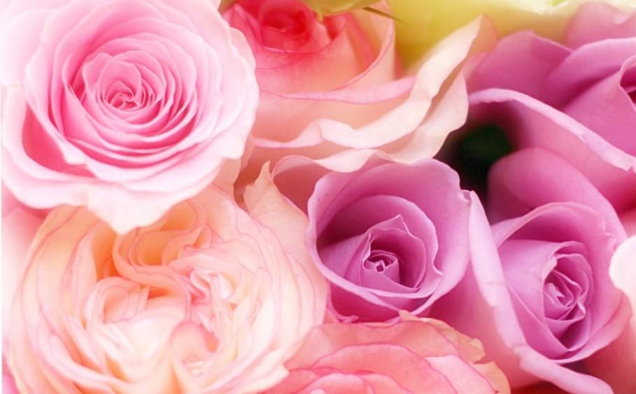 花男子プロデュース「暮らしにバラを」セミナー